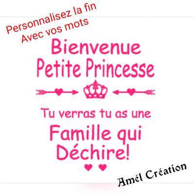 Tee shirt ML -  Bienvenue petite princesse ...