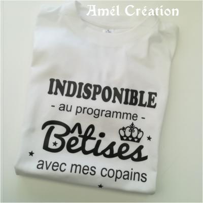 Tee shirt MC - indisponible bêtises avec ....