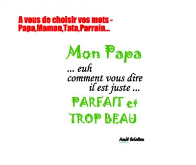 Tee shirt MC - Ma/Mon Papa/Maman euhh comment vous dire parfait