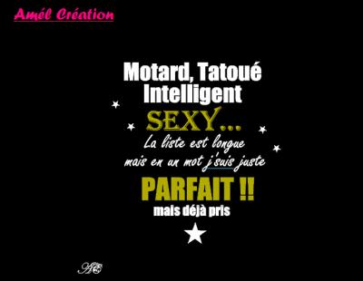 Sweat homme - MOTARD, TATOUE ... PARFAIT