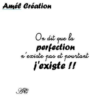 On dit que la perfection n existe pas et pourtant 9