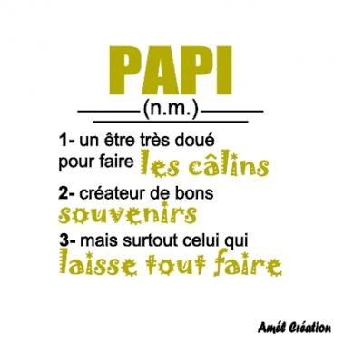 Tee shirt ML - Papi(y) ou autre - définition