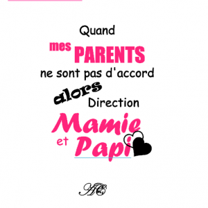 Quand mes parents ne sont pas d accord direction 13