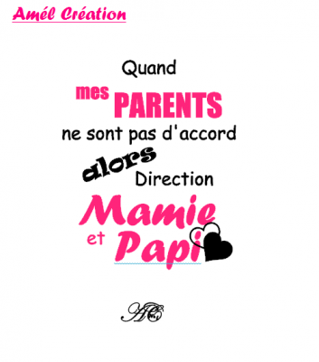Tee shirt enfant MC - Quand mes parents ne sont pas d'accord alors direction mamie et papi